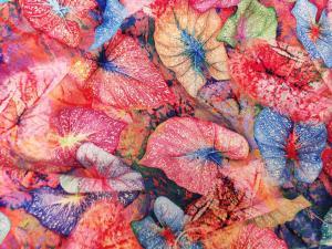 Ткань штапель Digital-принт листики на красном фоне купить в Украине недорого
