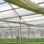 Commercial Greenhouse Plastic Industrial Greenhouse Palram Industries Ltd