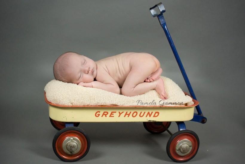 Vanceburg KY Newborn Photographer