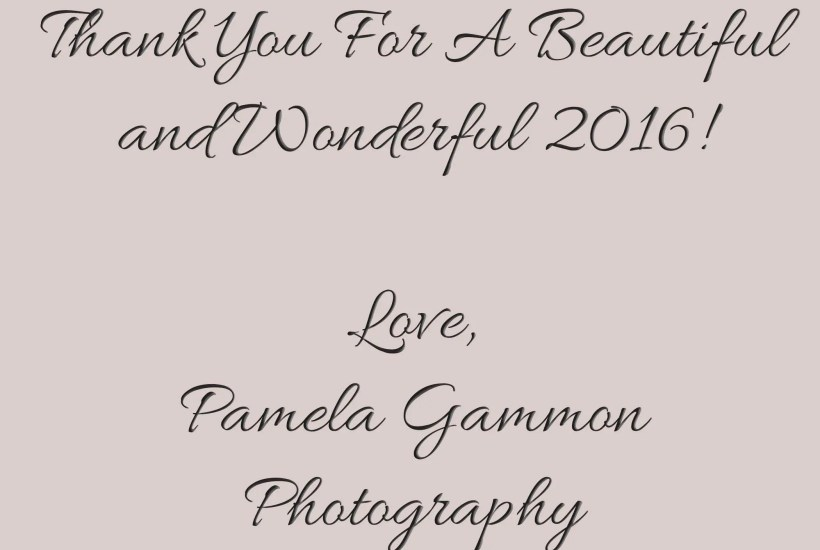 Pamela Gammon Photography