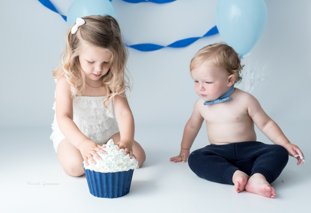 Cake Smash with Sibling Photos 1 year photos ohio