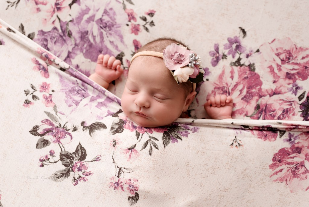 Baby Girl Photos Southern Ohio Newborn Session Portsmouth