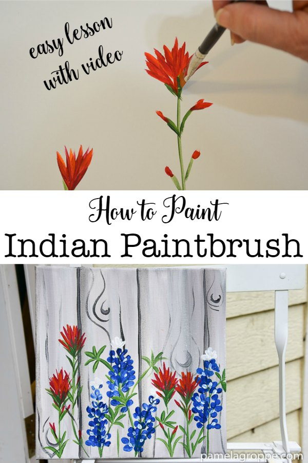 How to Paint Indian Paintbrush, one stroke at a time. An easy beginner painting lesson with step by step video! #painting #diydecor #acrylics