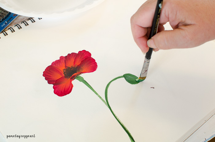 Paint Poppy bud
