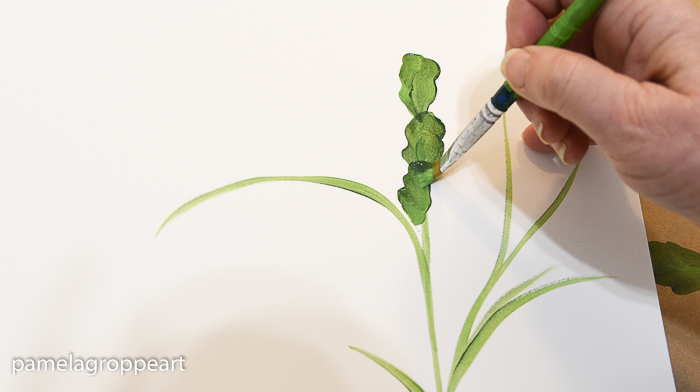 Painting a Christmas Cactus leaves, pamelagroppe.com