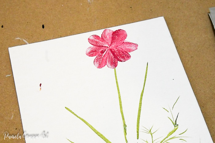 Paint a cosmos, petals and foliage
