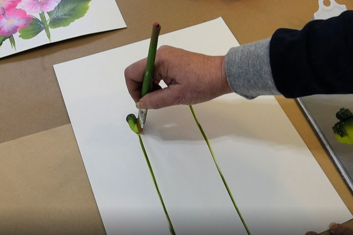 draw hollyhock stems with brush and add buds, pamela groppe art