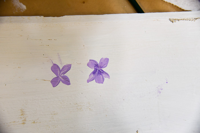 Paint whisker details on centers of violets