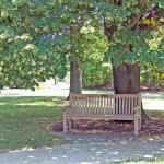 Design park bench