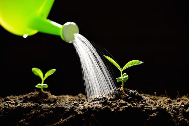 how to increase organic blog web traffic via social media content marketing