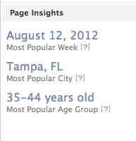 orlando social media consultant facebook insights