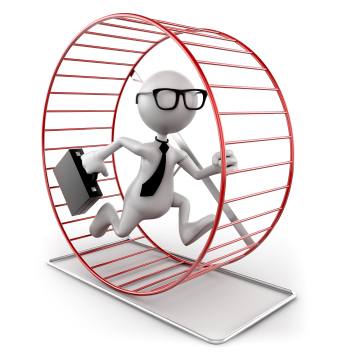 Image result for hamster in a wheel