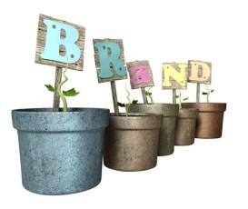 branding strategies social media
