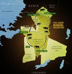 wildebeest trek2