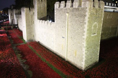Another wall of the Tower with the poppies below