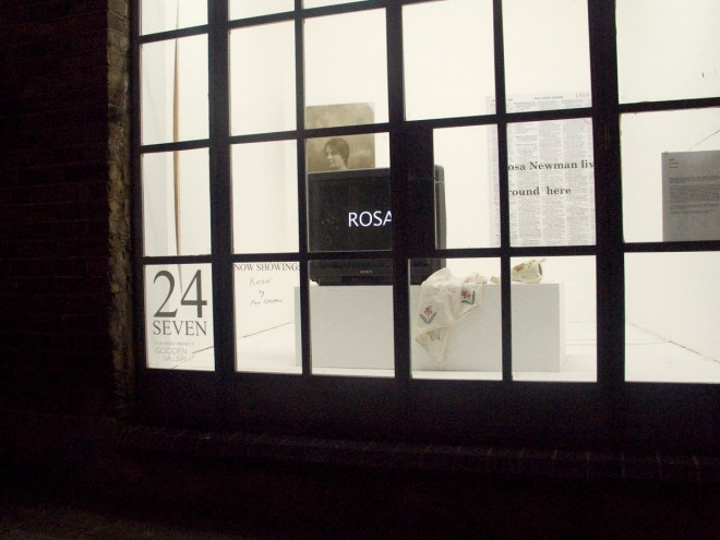 Rosa a window installation at Gooden Gallery, London. Pam Skelton 20011