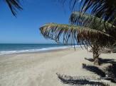 Peru2_04096