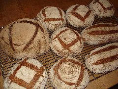 Panary | Going Professional -ex-student Fiona Shone's bread