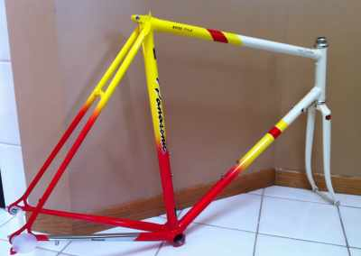 NOS '89 PICS Team Custom frame