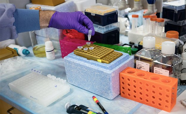Researchers discover signals that prepare the liver for pancreatic cancer metastases
