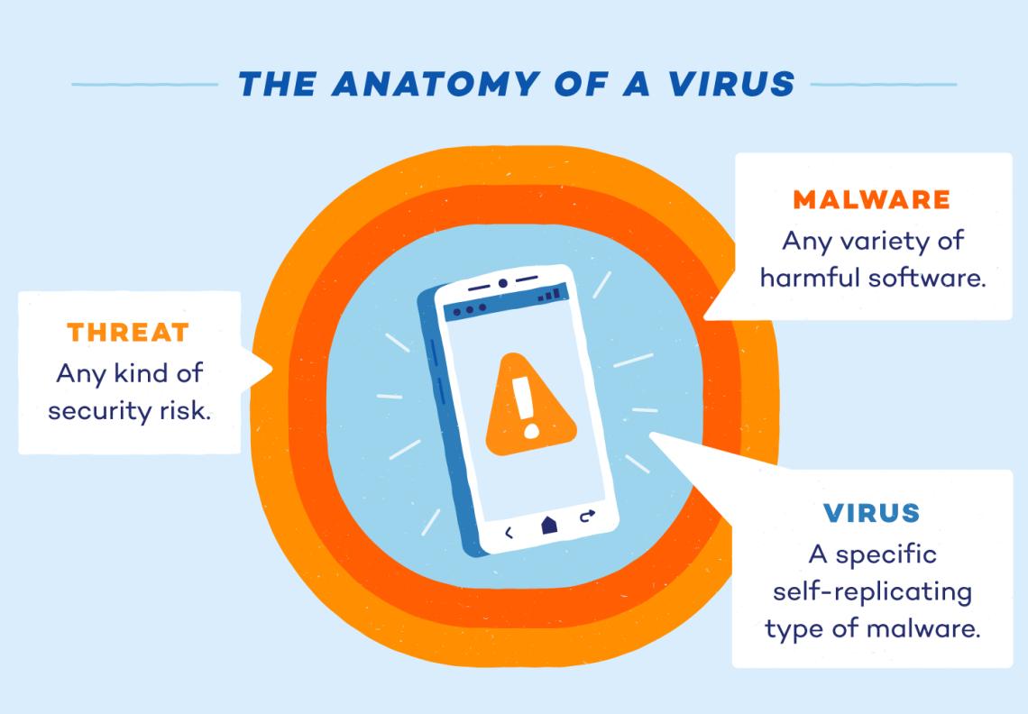 anatomy-of-a-virus