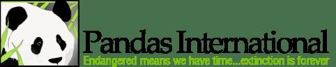 Pandas International