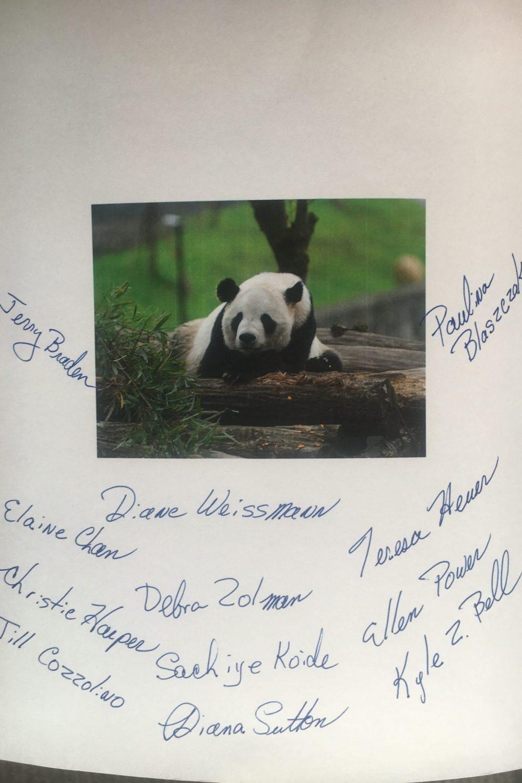 Tai Shan Celebrates His 11th Birthday Pandas International