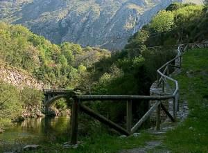 puente los grazos