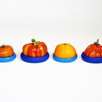 food huggers bestellen - foodhugger – groenten en fruit bewaren