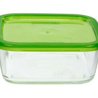 glazen bakjes vriezer - glazen diepvriesdozen - diepvries magnetron bakjes