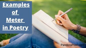 Examples of Meter in Poetry with Explanation