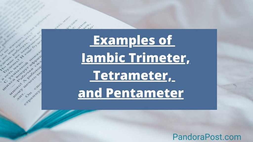 Read more about the article Examples of Iambic Trimeter, Tetrameter, and (Pentameter) in Poetry