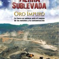 """""""Tierra Sublevada"""" de Pino Solanas: O entérese cómo me Encañonaron en la Cinemateca Nacional con una Pistola"""