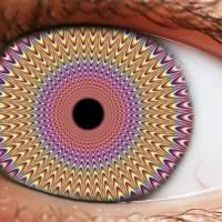 ¿Qué son las drogas psicodélicas?