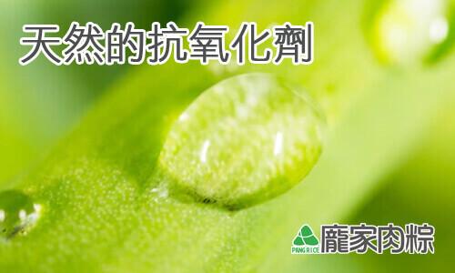 粽子外頭的粽葉含有天然的抗氧化劑?