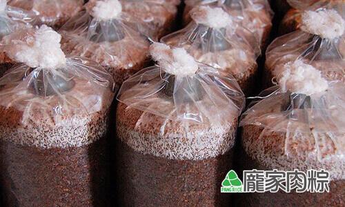 82-06加入菇菌的真空包
