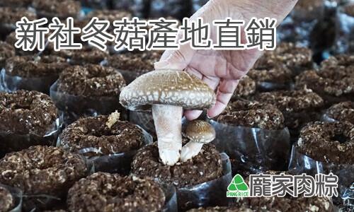 82-00龐家肉粽新社原產地購買新社高品質冬菇包粽子(肉粽食材介紹)