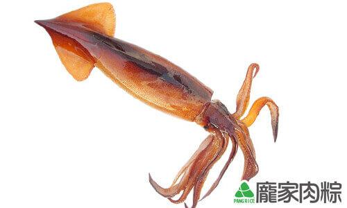 92-01魷魚