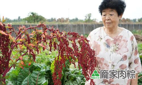 112-16熟成之後就會變成漂亮的紅色,所以才會被稱為「紅藜」、「穀物中的紅寶石」。