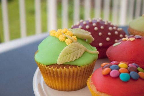 cupcakes-glaces-et-decores-2