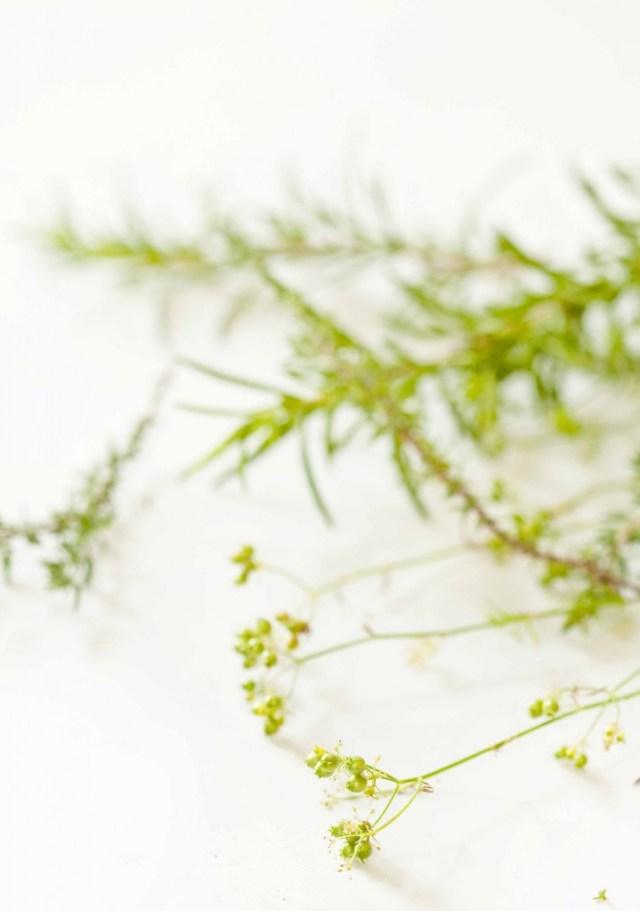 Riz aux olives Coriandre fraîche en graines 1
