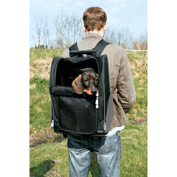 transportryggsäck hund. Perfekt ill nyopererade eller dålig rygg trappor