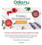 Blomsterfrön från 8 kr