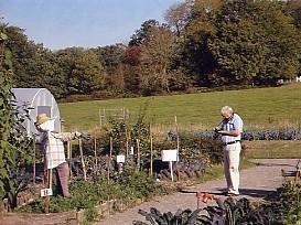Bore Place organic garden