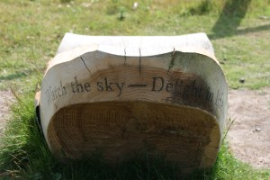 Watch the sky - Delight in Life
