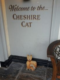 13. The Cheshire Cat