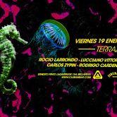 Terraza Electrónica, Viernes 19 Enero Club Ambar/Microclub