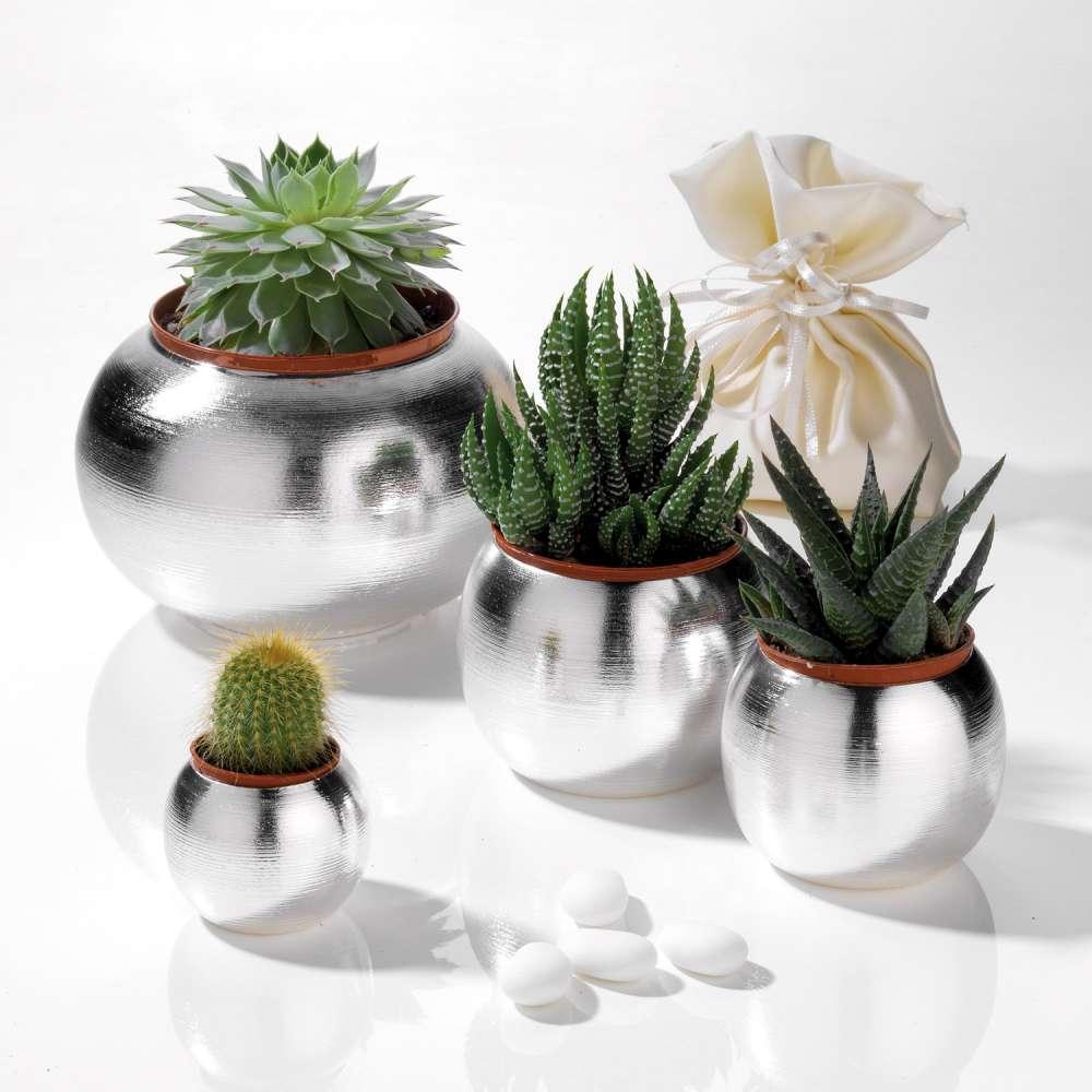 bomboniere piante grasse sposi-1000