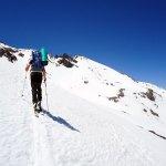Buitre en primer plano y Poli detrás ascendiendo a Elorrieta (3.187 m)