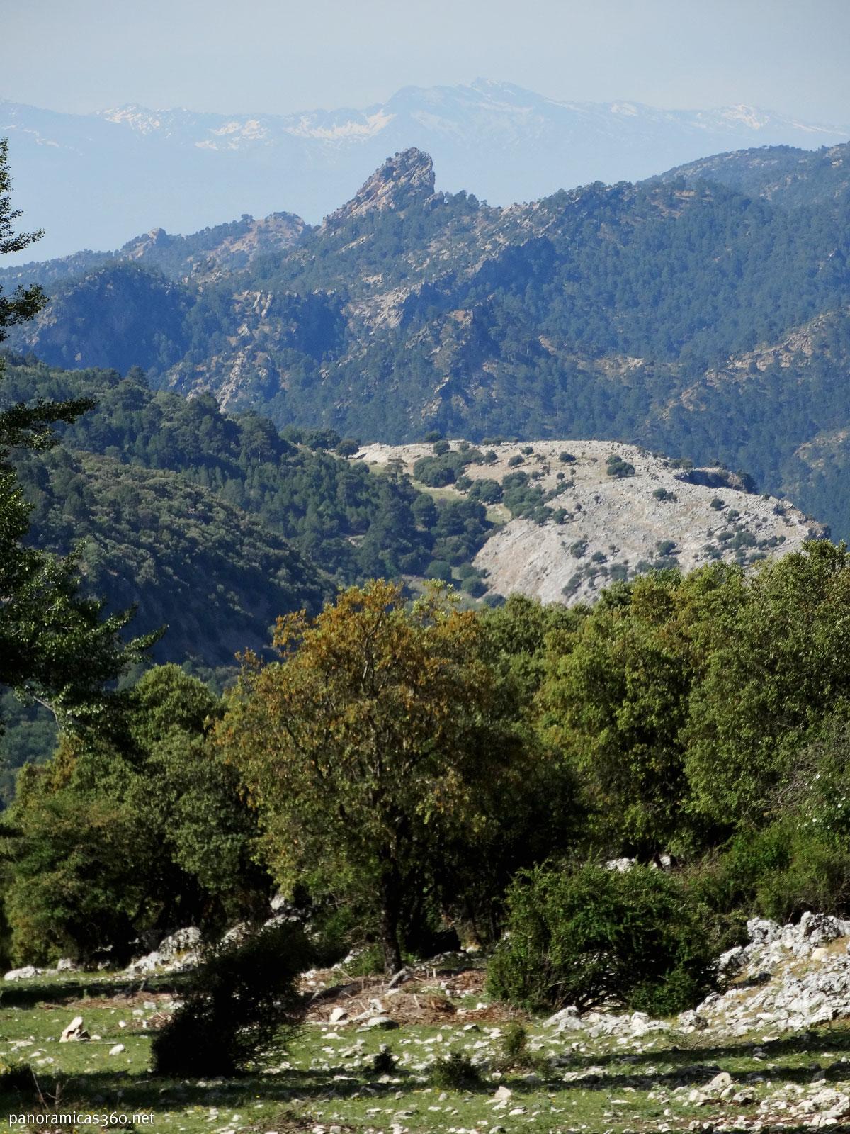 El Veleta de Sierra Nevada desde Cazorla